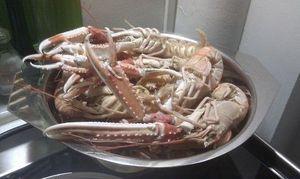 Bourride de homard et langoustines